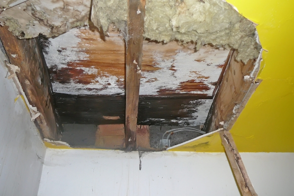 detailed inspection in to cause of roof failure