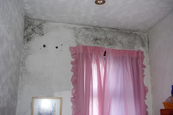 mould from condensation